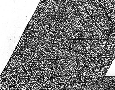 Illustration Through Drawing