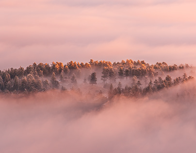 Boulder Beauty