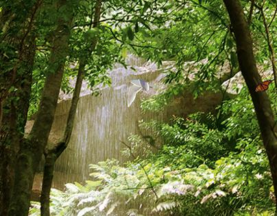 Baumgarten Environmental Ads