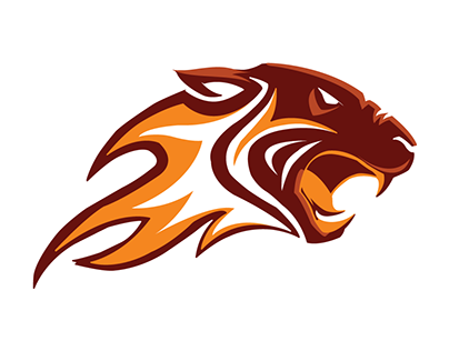 tiger logo project