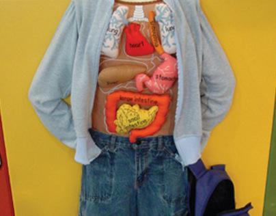 Long Island Children's Museum Exhibits
