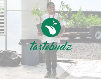 TASTEBUDZ / Brand Identity