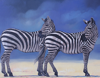 Zebras oil paintins