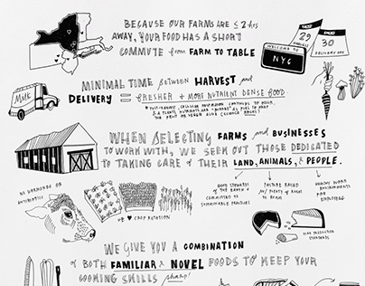 Local Roots NYC Infographic