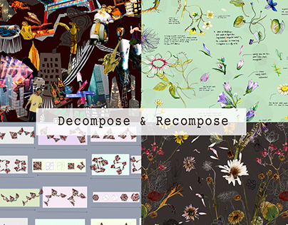 Decompose & Recompose