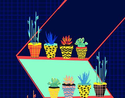 Plenty of plants