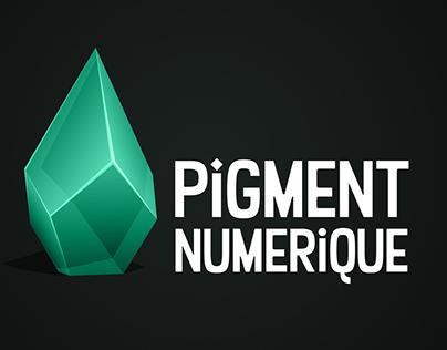 Pigment Numérique