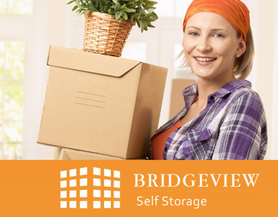 Bridgeview Self Storage: Logo + Website Design