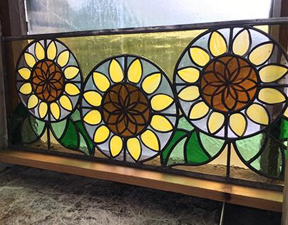 Sunflowers. Ripon