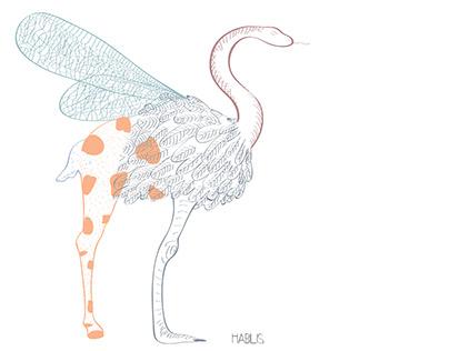 Edition Illustration: projet cours de dessin