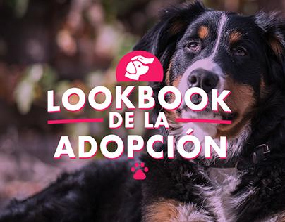 Ripley / LookBook de la Adopción