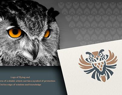 Soaring owl logo