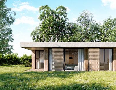 wood house visualizations