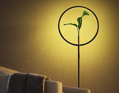 LUXIE | VASE & LAMP