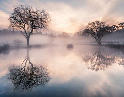 Nature Photography Sunrise