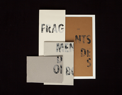 Fragments de bois