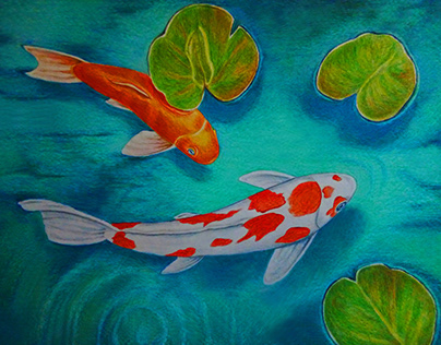 Koi fish. Colour pencils.