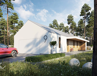 Modern single-family house 12