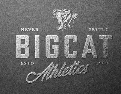 Big Cat Athletics