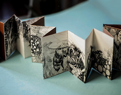 """""""The book of Bees"""" an accordion book"""