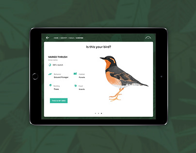 Beak-a-Boo | App Design