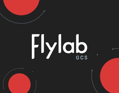 Flylab GCS | Custom Flight Interface