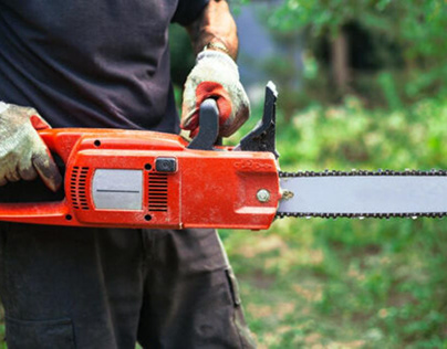 Best Electric Chainsaw in 2021