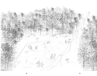 city forest_2020