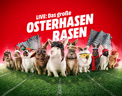 Media-Markt The Rabbit Race