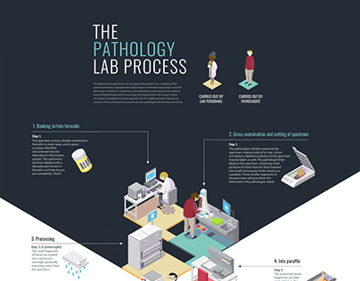 Isometric Poster Design - The Pathology Lab Process