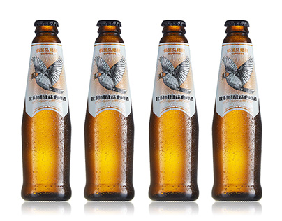 Rookie Craft beer