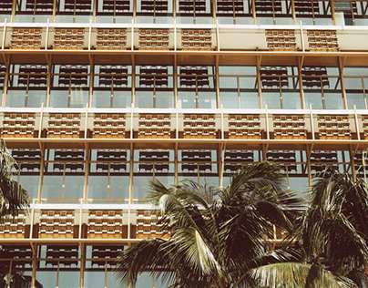 Architecture & Palm Trees
