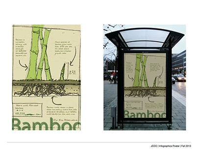 Bamboo Infographics Poster