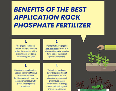 Top 4 Benefits of Rock Phosphate Fertiliser