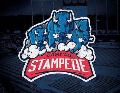 Edmond Stampede | Website, Branding, logo