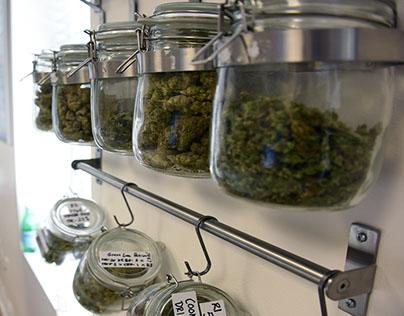 Cannabis in Washington D.C.