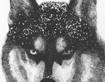 Inktober2019. Husky