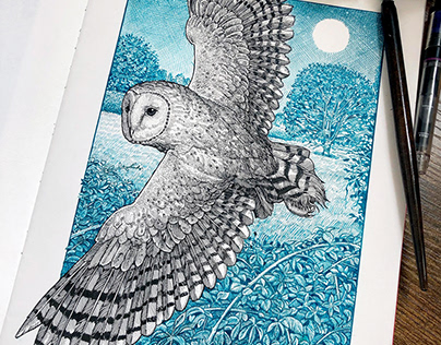Wildlife Colour Sketchbook