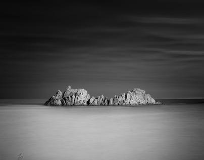 The Rock - Black & White Edition