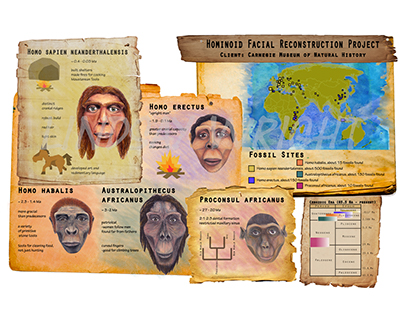 Hominoid Facial Reconstruction