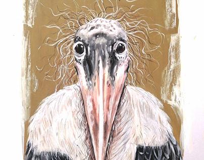 Crazy Haired Bird