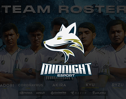 Final Year Project : Midnight Esport (Branding)