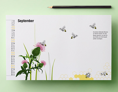 The social life of bees - Informationdesign