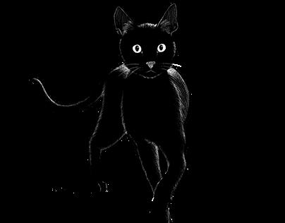 Panther Black Cat II