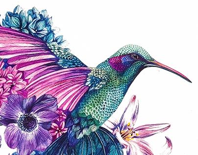 Botanic Hummingbirds