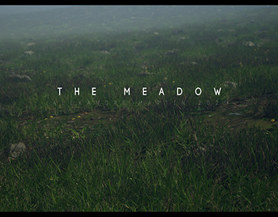 The Meadow ///