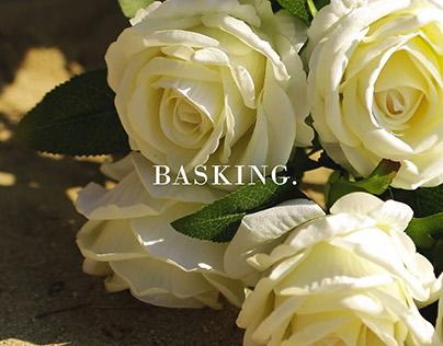 Basking.