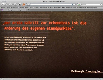 McKinsey & Company. Website 1998.
