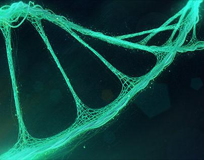 DNA HUD