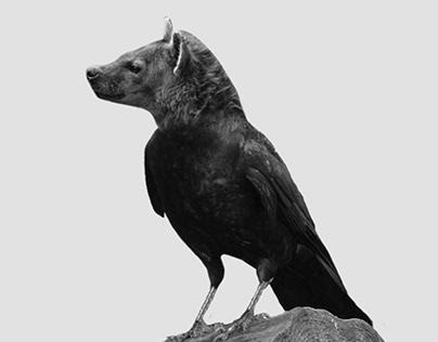 HyenaCrow